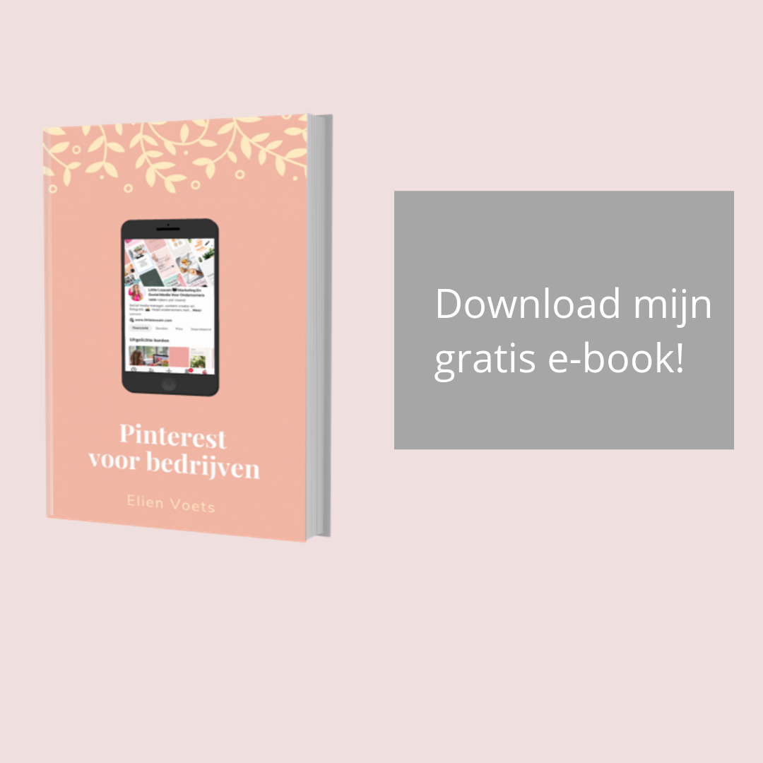 Download mijn gratis Pinterest e-book lead magnet